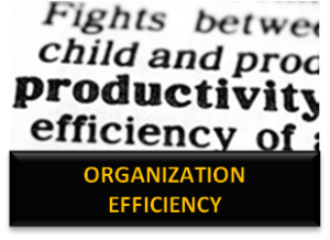 GO ORGANIZATION EFFICIENCY